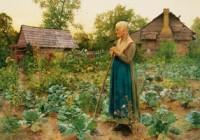 shades_tsm_0021-crop